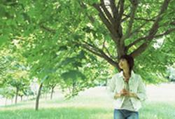 010502-tree