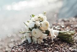 たむけられた花の写真